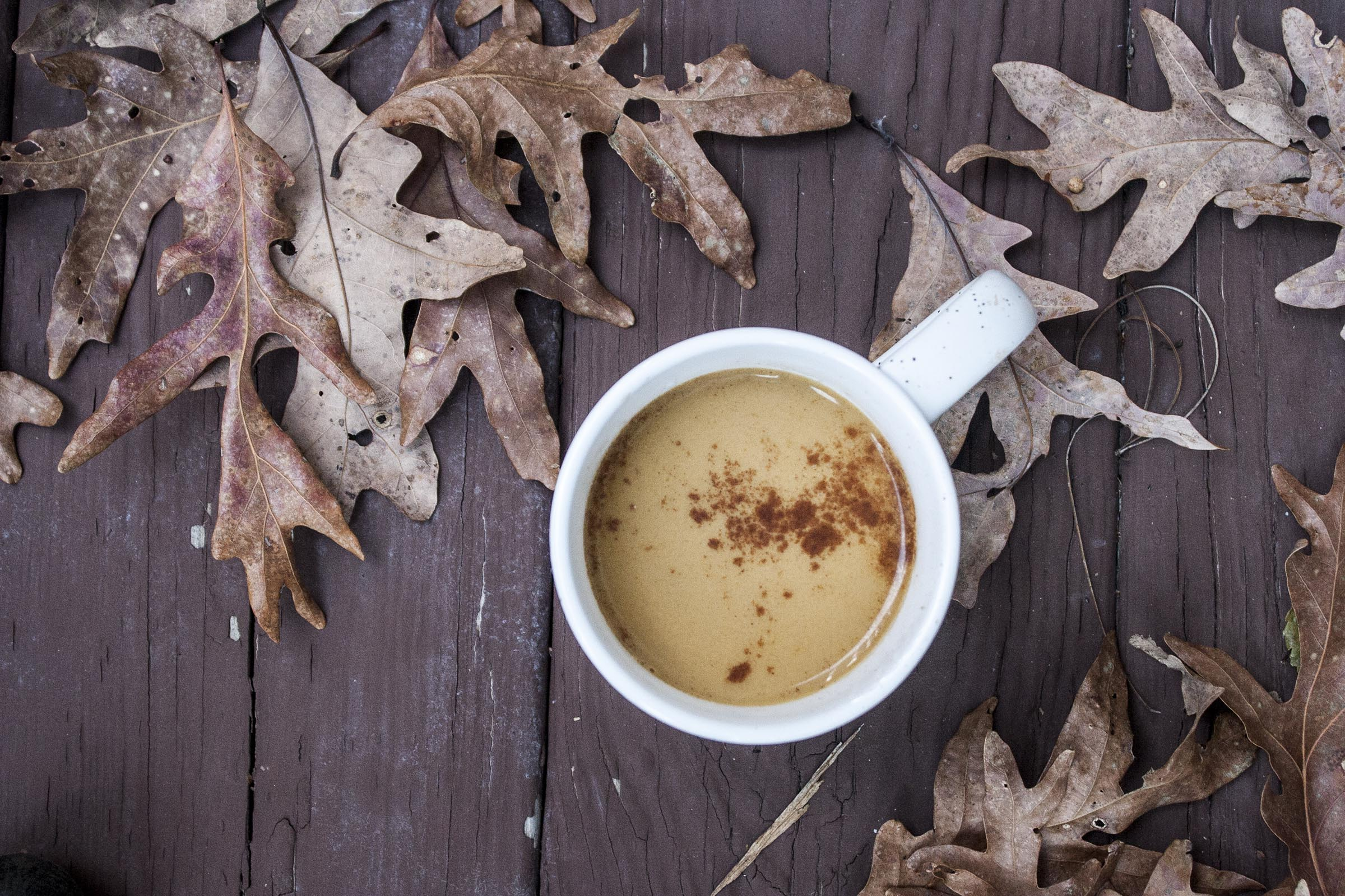 Cinnamon Dusted Pumpkin Pecan Milk - exactly what we need when the weather is chilly and the afternoon is long. lifeaswecook.com